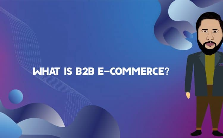 What is B2B Ecommerce?